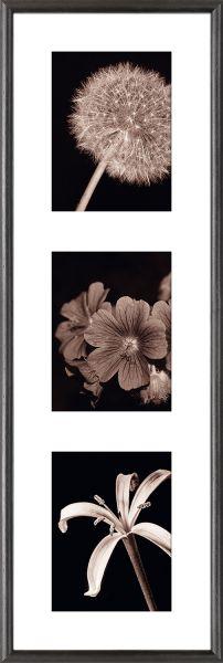 Galerierahmen G004 25 x 80 Normalglas inkl. Passepartout weiß - 3 Ausschnitte 15 x 20 hoch