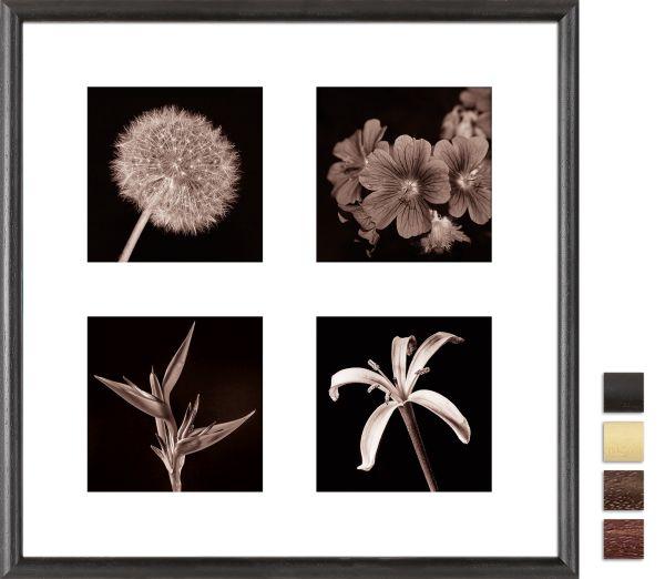 Galerierahmen G004 40 x 40 Normalglas inkl. Passepartout weiß - 4 Ausschnitte 13 x 13