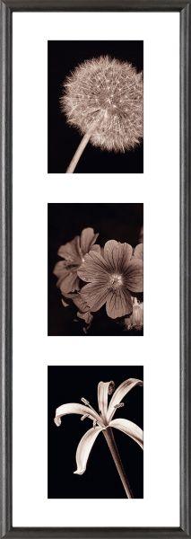 Galerierahmen G004 23 x 70 Normalglas inkl. Passepartout weiß - 3 Ausschnitte 13 x 18 hoch