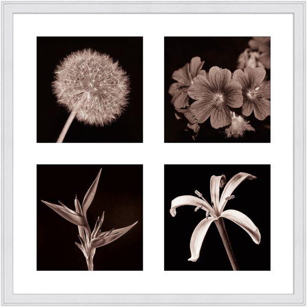 Galerierahmen G320 40 x 40 Normalglas inkl. Passepartout weiß - 4 Ausschnitte 15 x 15