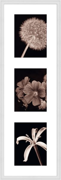 Galerierahmen G320 25 x 80 Normalglas inkl. Passepartout weiß - 3 Ausschnitte 15 x 20 hoch
