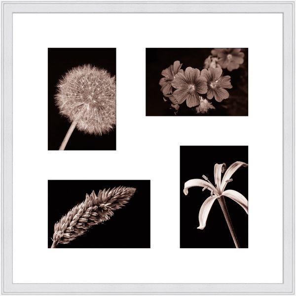 Galerierahmen G320 40 x 40 Normalglas inkl. Passepartout weiß - 4 Ausschnitte 10 x 15
