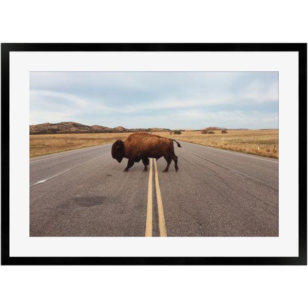 Wisent bei Straßenüberquerung | Poster mit Holzrahmen 50x70 cm