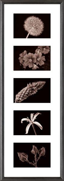 Galerierahmen G004 23 x 70 Normalglas inkl. Passepartout weiß - 5 Ausschnitte 10 x 15 quer