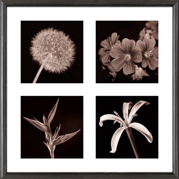 Galerierahmen G004 40 x 40 Normalglas inkl. Passepartout weiß - 4 Ausschnitte 15 x 15