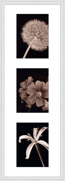 Galerierahmen G320 23 x 70 Normalglas inkl. Passepartout weiß - 3 Ausschnitte 13 x 18 hoch