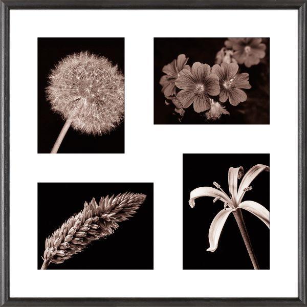 Galerierahmen G004 50 x 50 Normalglas inkl. Passepartout weiß - 4 Ausschnitte 15 x 20