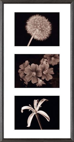 Galerierahmen G004 30 x 60 Normalglas inkl. Passepartout weiß - 3 Ausschnitte 15 x 20 quer