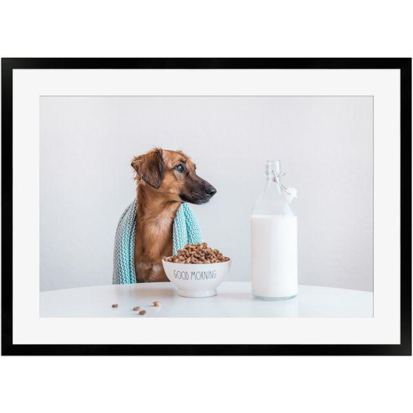 Frühstückszeit mit Hund | Poster mit Holzrahmen 50x70 cm