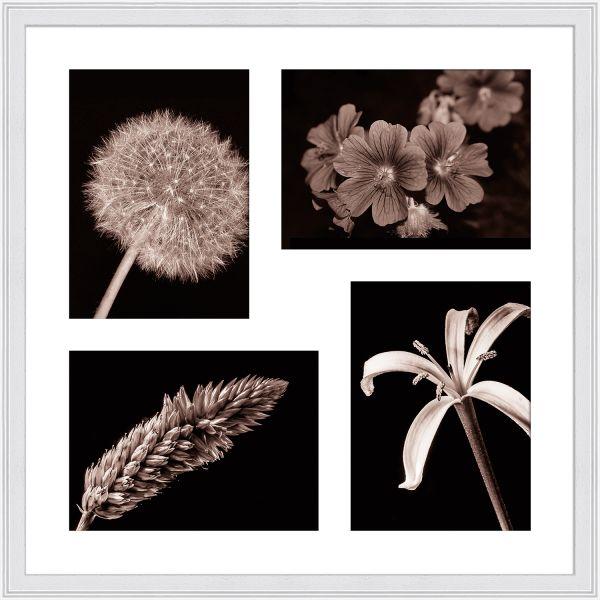 Galerierahmen G320 40 x 40 Normalglas inkl. Passepartout weiß - 4 Ausschnitte 13 x 18