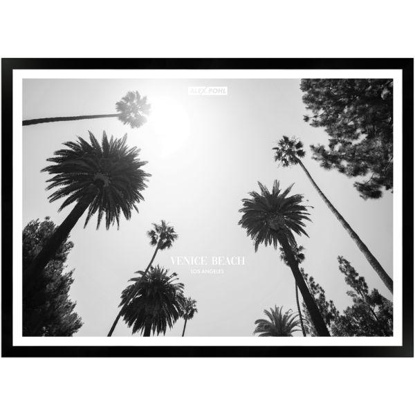 Venice Beach Palmtrees by Alex Pohl | Poster mit Holzrahmen 50x70 cm